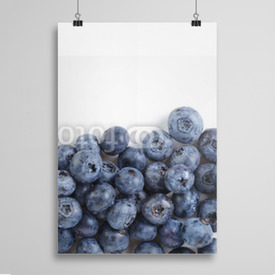 Poster border from ripe washed blueberries