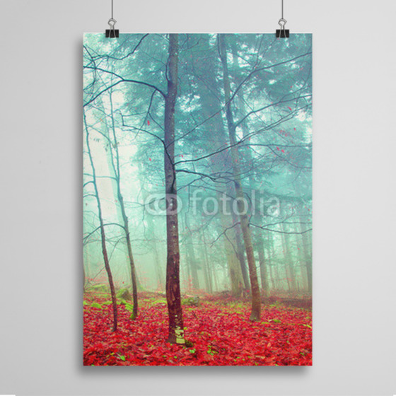 Poster Colorful mystic autumn trees