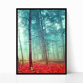 Plakat w ramie Colorful mystic autumn trees