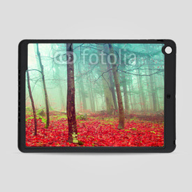 Obudowa na iPad Air Colorful mystic autumn trees