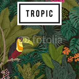 Etui na iPhone 5/5s/5SE TROPIC