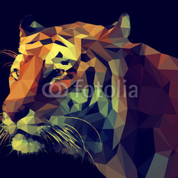 Poster Poly Tiger